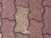 schmitts-borgert-paving-stones-005