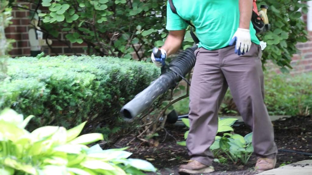Landscape maintenance schmitt 39 s landscape company for Garden maintenance work